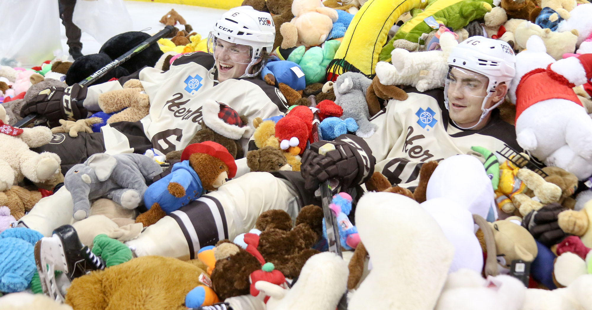 Hershey Bears hold 2017 Teddy Bear Toss